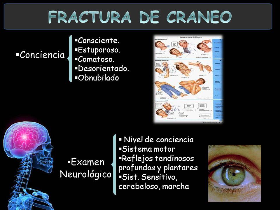 FRACTURA DE CRANEO Conciencia Examen Neurológico Consciente.