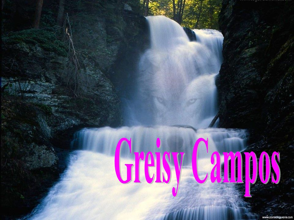 Greisy Campos