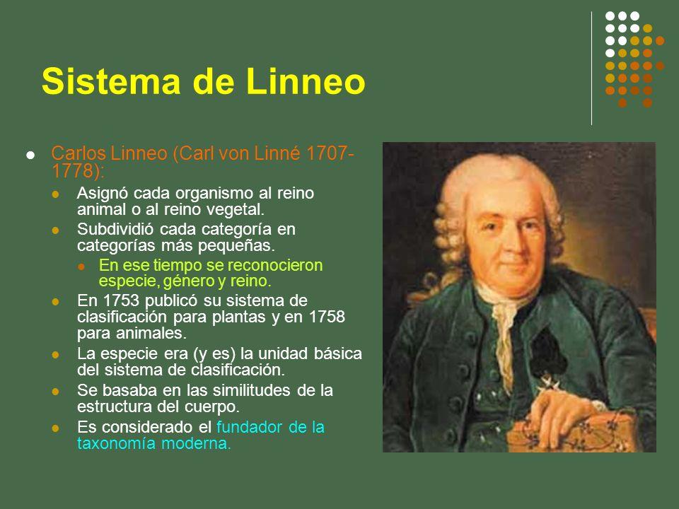 Sistema de Linneo Carlos Linneo (Carl von Linné 1707-1778):