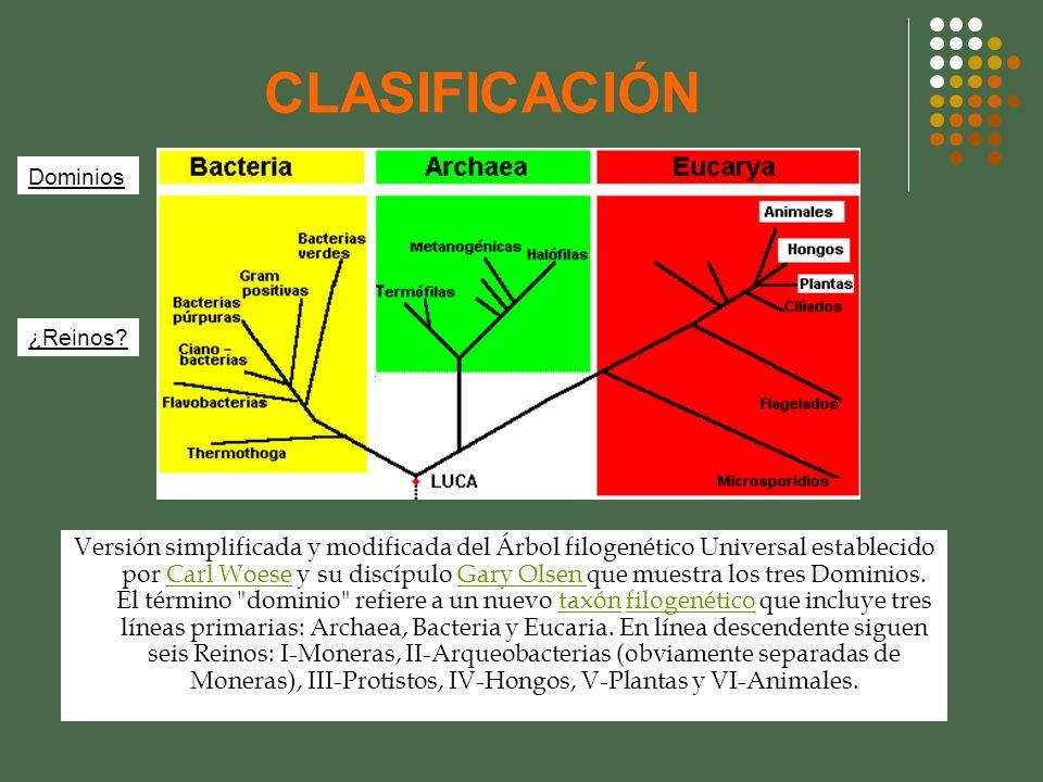 CLASIFICACIÓN Dominios. ¿Reinos