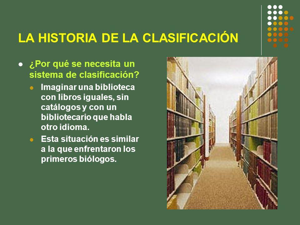 LA HISTORIA DE LA CLASIFICACIÓN