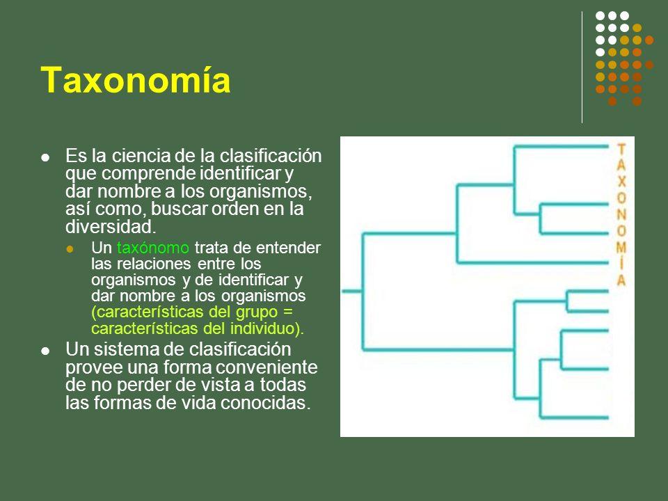 TaxonomíaEs la ciencia de la clasificación que comprende identificar y dar nombre a los organismos, así como, buscar orden en la diversidad.