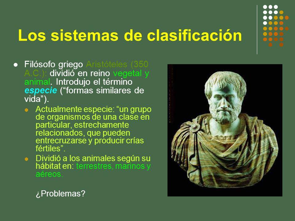 Los sistemas de clasificación