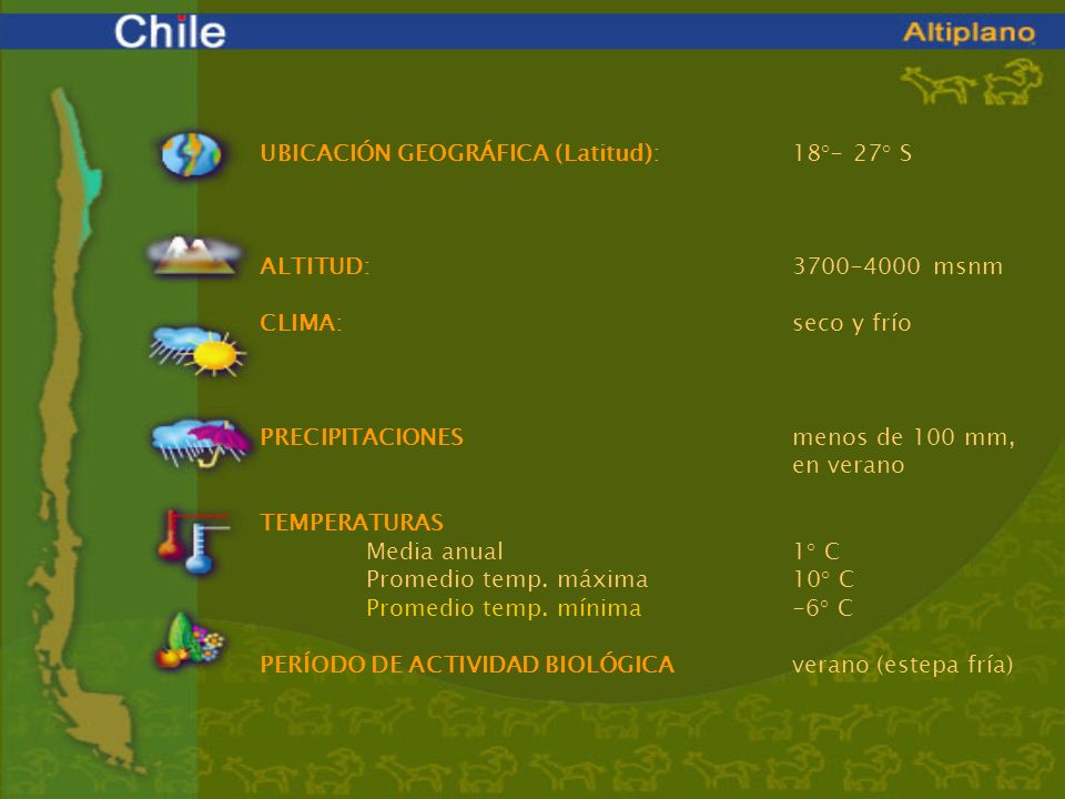 UBICACIÓN GEOGRÁFICA (Latitud): 18°- 27° S. ALTITUD: 3700-4000 msnm. CLIMA: seco y frío.