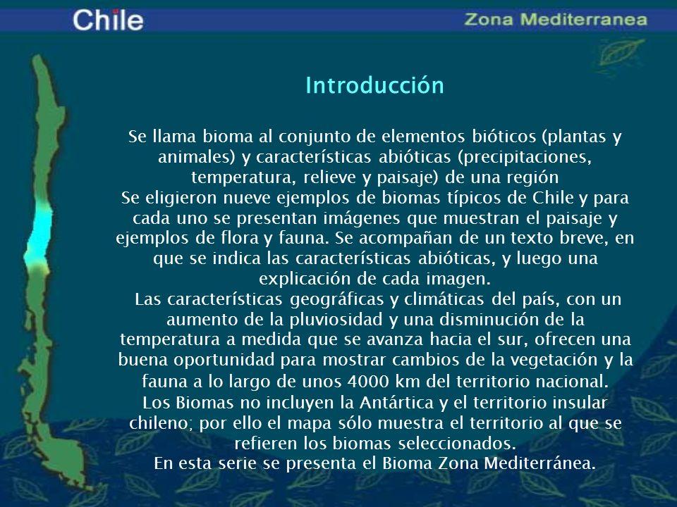 En esta serie se presenta el Bioma Zona Mediterránea.