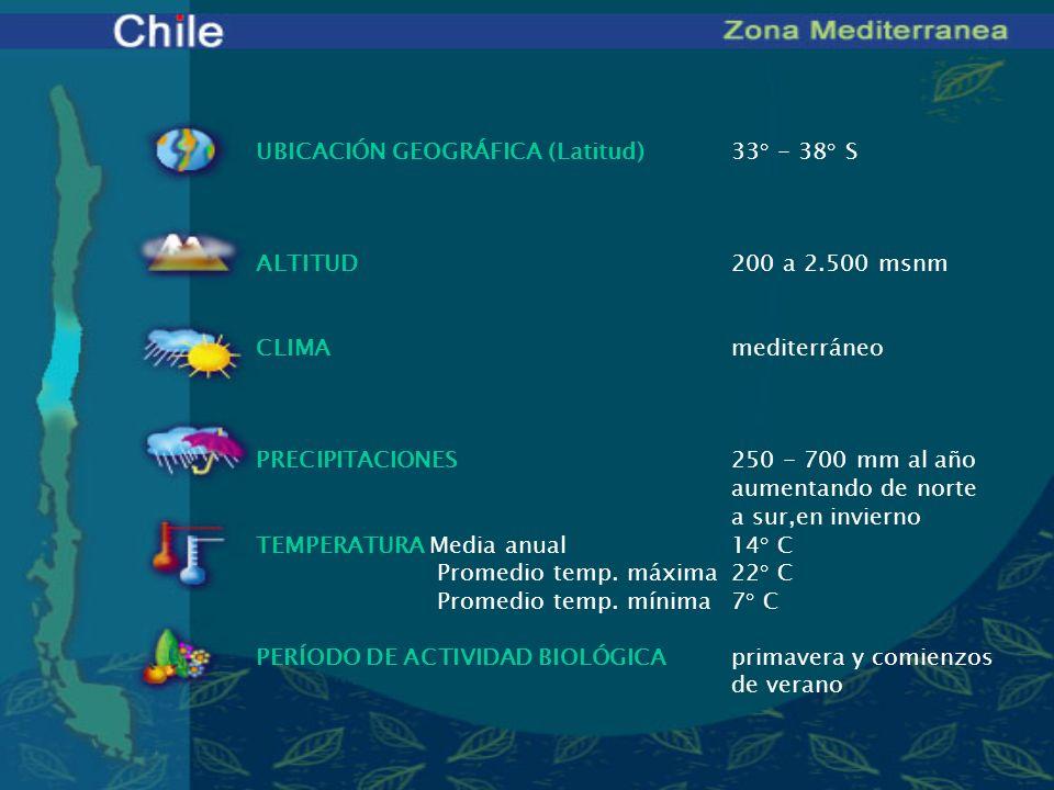 UBICACIÓN GEOGRÁFICA (Latitud) 33° - 38° S. ALTITUD 200 a 2.500 msnm. CLIMA mediterráneo.