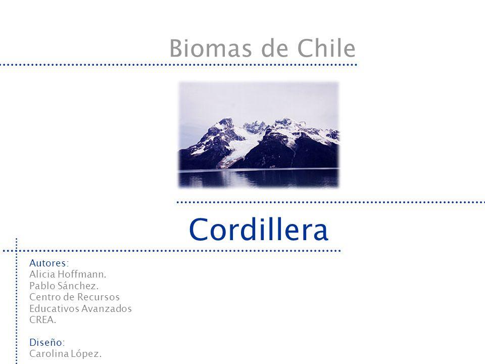 Cordillera Biomas de Chile Autores: Alicia Hoffmann. Pablo Sánchez.