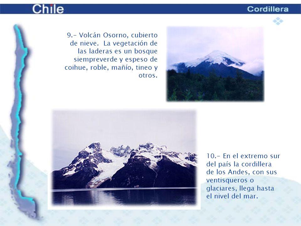 9. - Volcán Osorno, cubierto de nieve