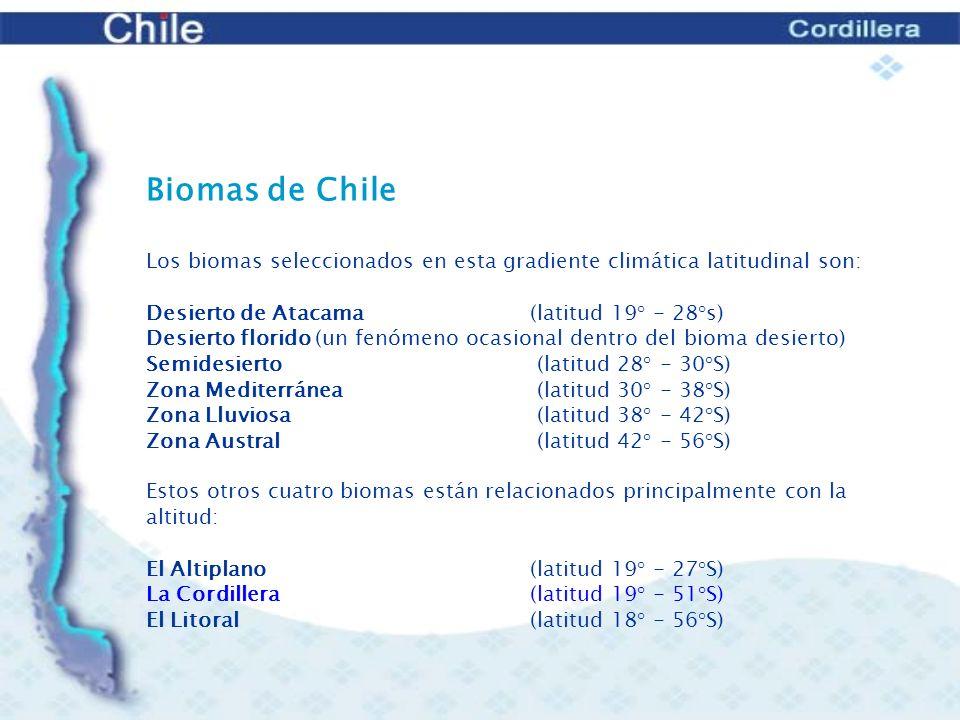 Biomas de Chile Los biomas seleccionados en esta gradiente climática latitudinal son: Desierto de Atacama (latitud 19° - 28°s)