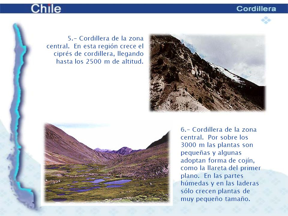 5. - Cordillera de la zona central
