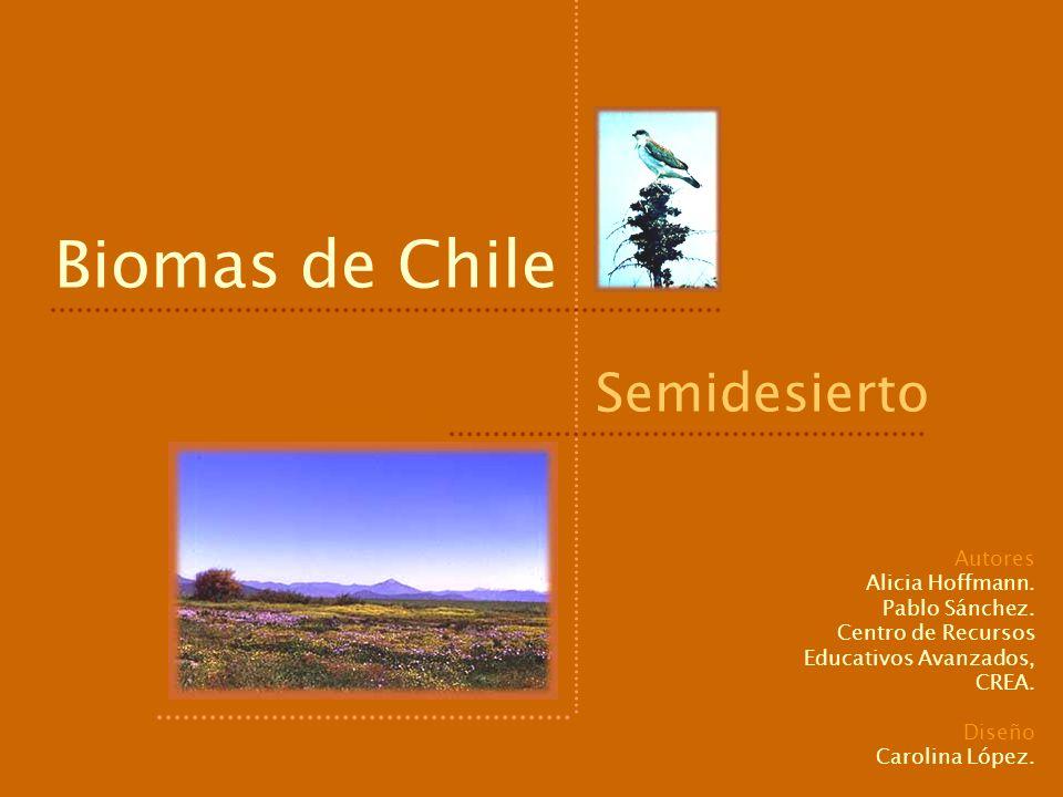Biomas de Chile Semidesierto Autores Alicia Hoffmann. Pablo Sánchez.