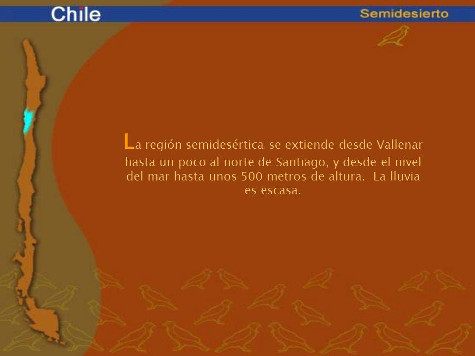La región semidesértica se extiende desde Vallenar hasta un poco al norte de Santiago, y desde el nivel del mar hasta unos 500 metros de altura. La lluvia es escasa.