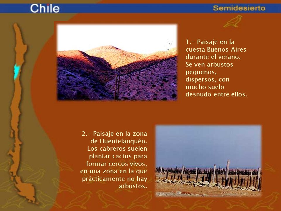 1. - Paisaje en la cuesta Buenos Aires durante el verano