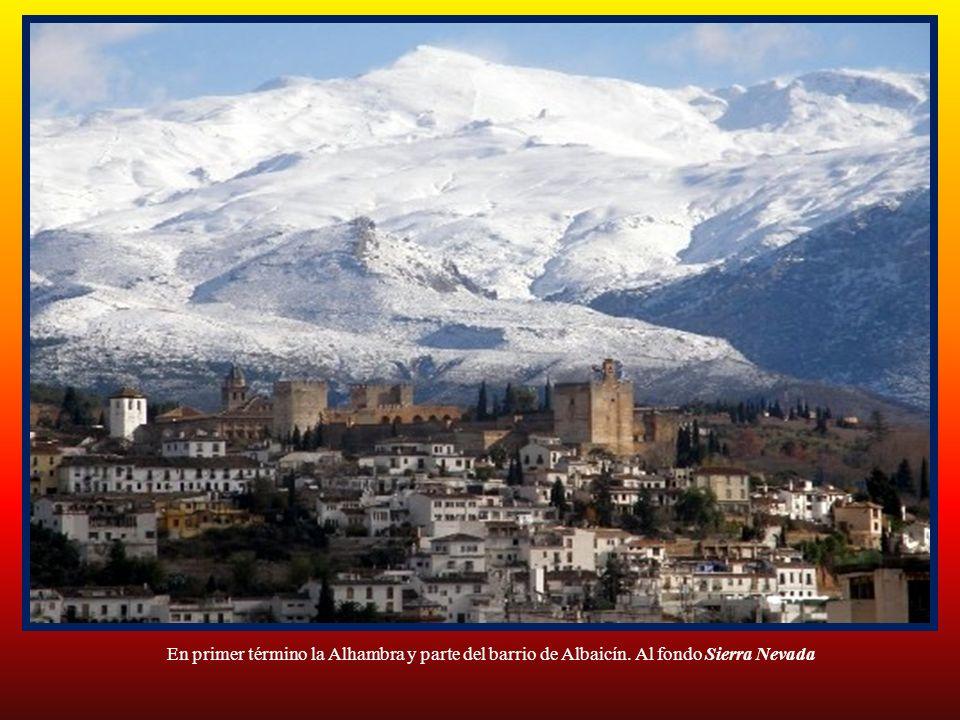 En primer término la Alhambra y parte del barrio de Albaicín