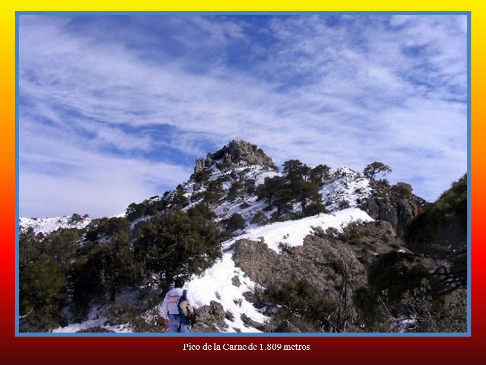 Pico de la Carne de 1.809 metros