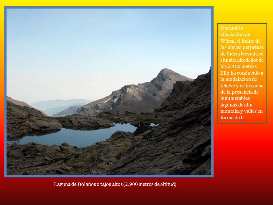 Durante la Glaciación de Würm, el limite de las nieves perpetuas de Sierra Nevada se situaba alrededor de los 2.400 metros. Ello ha conducido a la modelación de relieve y es la causa de la presencia de innumerables lagunas de alta montaña y valles en forma de U