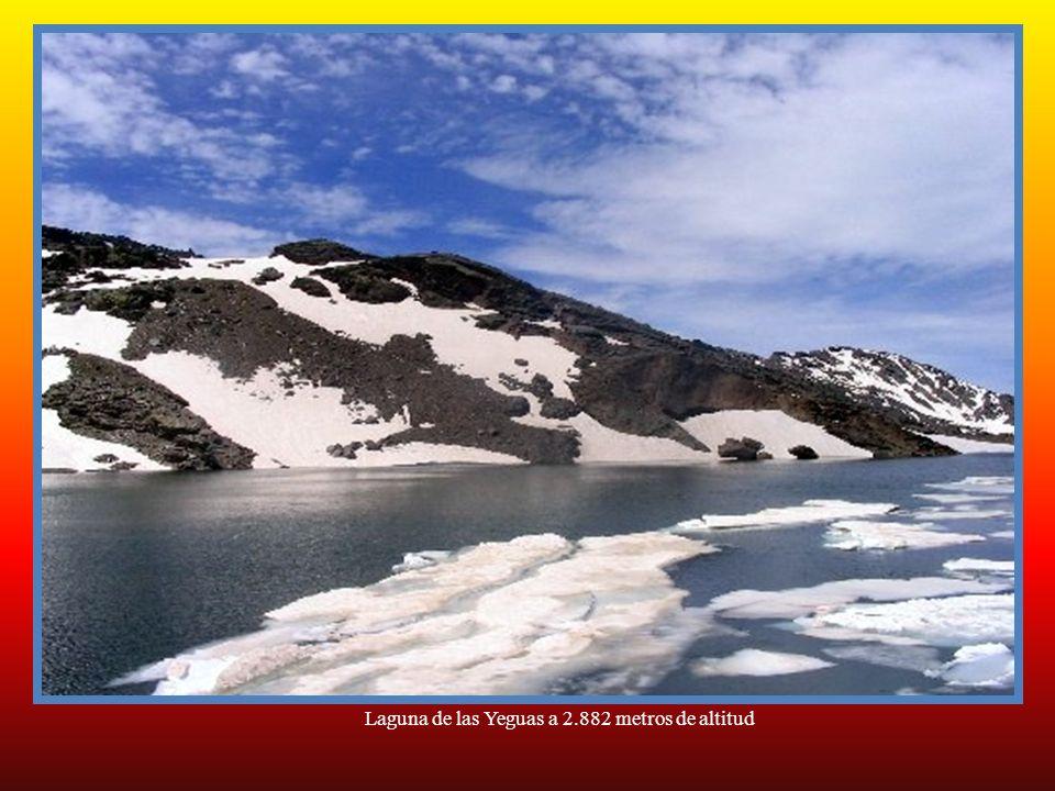 Laguna de las Yeguas a 2.882 metros de altitud