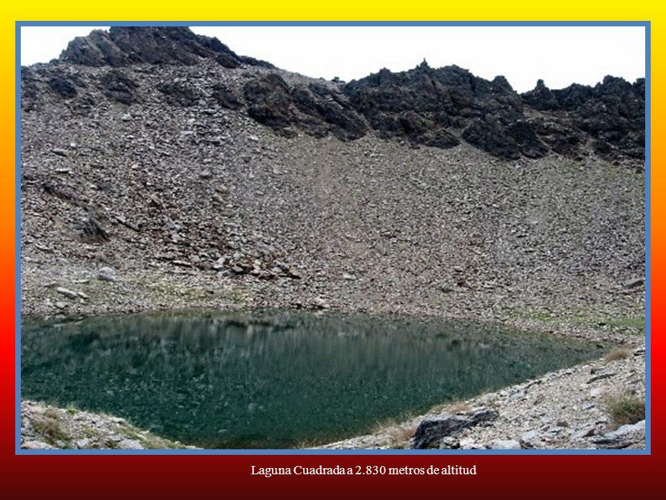Laguna Cuadrada a 2.830 metros de altitud