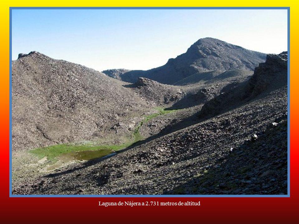 Laguna de Nájera a 2.731 metros de altitud