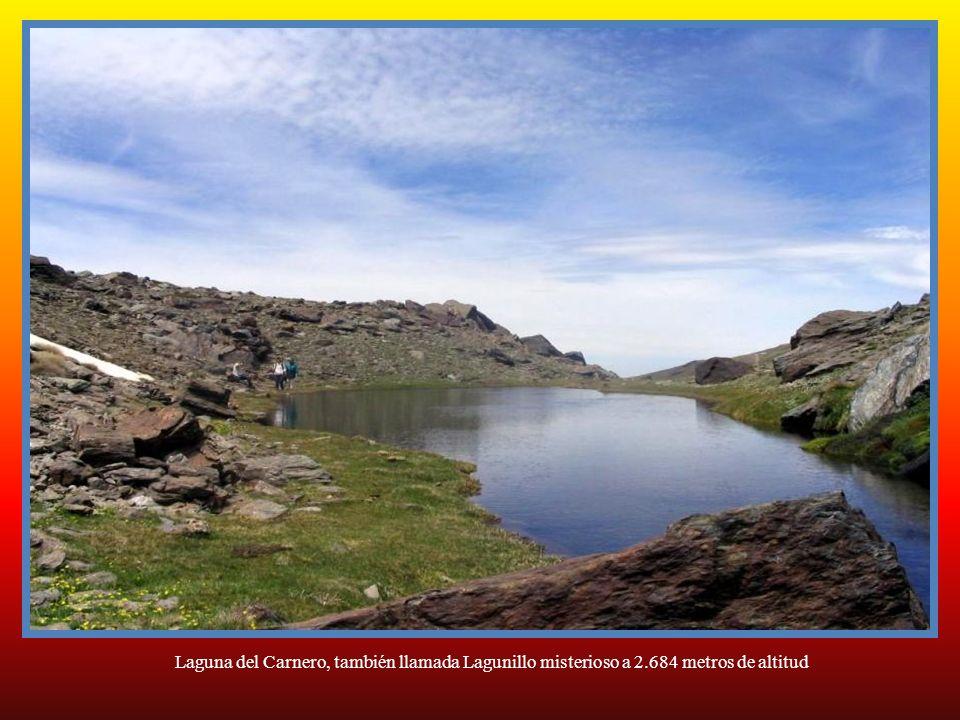 Laguna del Carnero, también llamada Lagunillo misterioso a 2