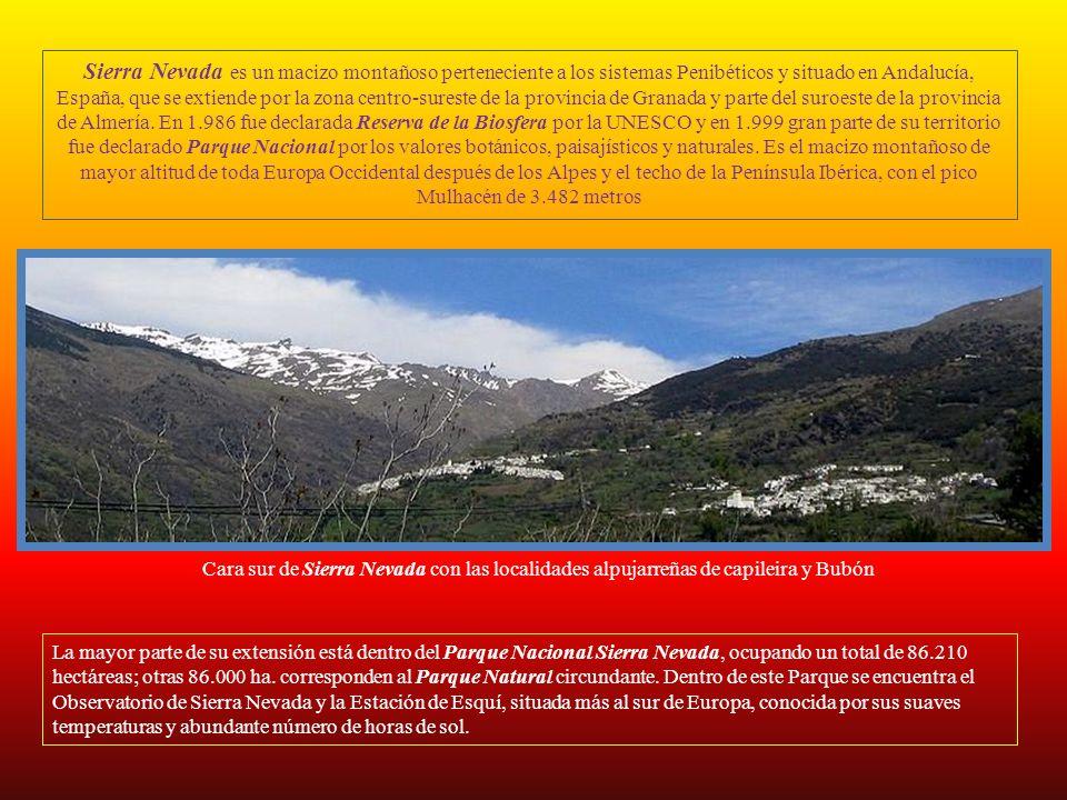 Sierra Nevada es un macizo montañoso perteneciente a los sistemas Penibéticos y situado en Andalucía, España, que se extiende por la zona centro-sureste de la provincia de Granada y parte del suroeste de la provincia de Almería. En 1.986 fue declarada Reserva de la Biosfera por la UNESCO y en 1.999 gran parte de su territorio fue declarado Parque Nacional por los valores botánicos, paisajísticos y naturales. Es el macizo montañoso de mayor altitud de toda Europa Occidental después de los Alpes y el techo de la Península Ibérica, con el pico Mulhacén de 3.482 metros