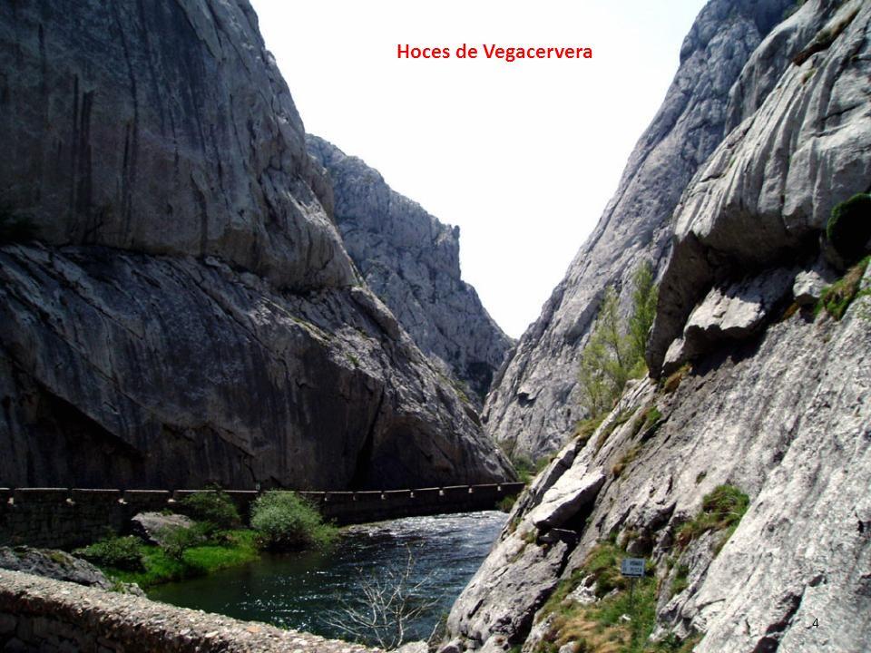 Hoces de Vegacervera