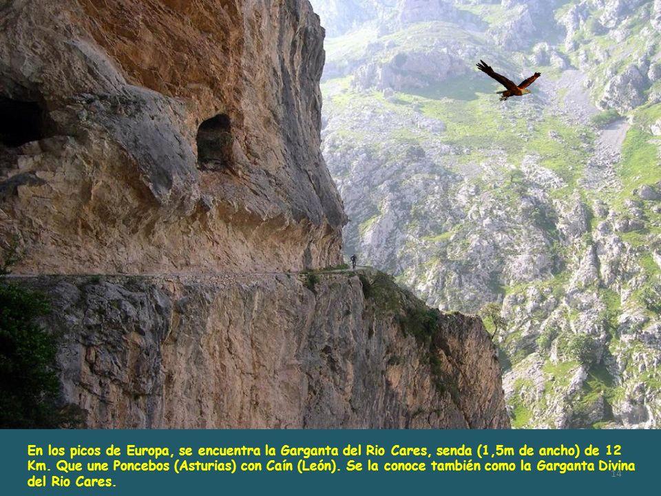 En los picos de Europa, se encuentra la Garganta del Rio Cares, senda (1,5m de ancho) de 12 Km.