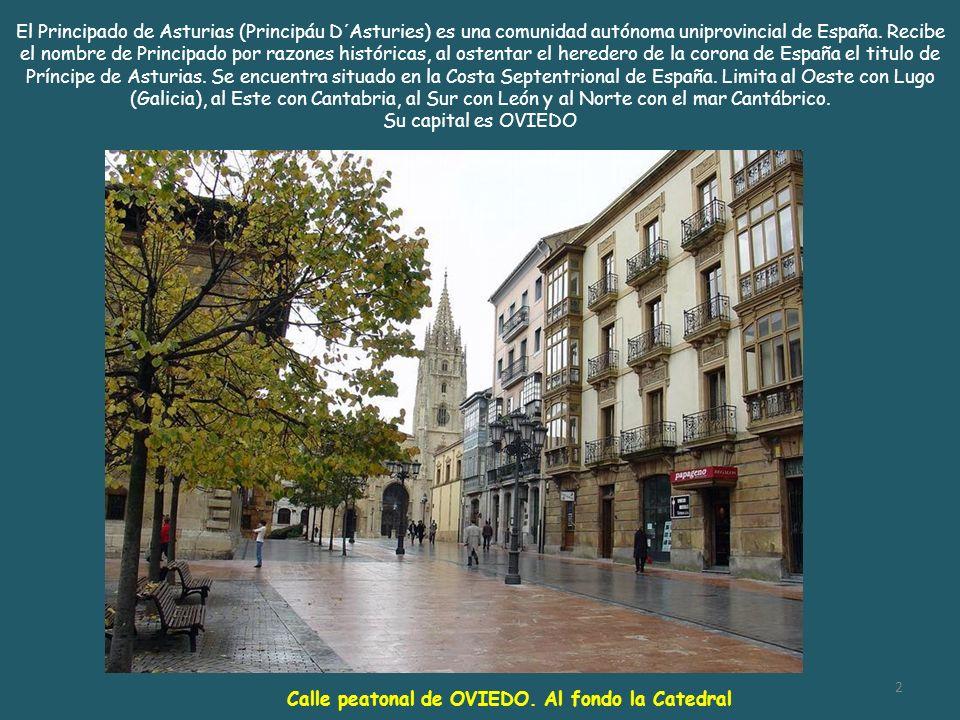 El Principado de Asturias (Principáu D´Asturies) es una comunidad autónoma uniprovincial de España. Recibe el nombre de Principado por razones históricas, al ostentar el heredero de la corona de España el titulo de Príncipe de Asturias. Se encuentra situado en la Costa Septentrional de España. Limita al Oeste con Lugo (Galicia), al Este con Cantabria, al Sur con León y al Norte con el mar Cantábrico.