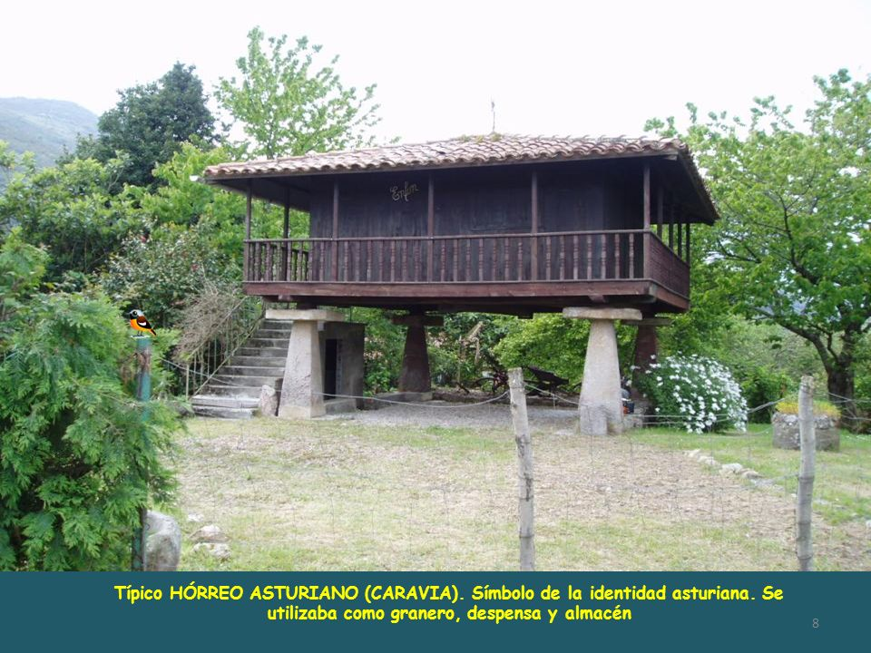 Típico HÓRREO ASTURIANO (CARAVIA). Símbolo de la identidad asturiana