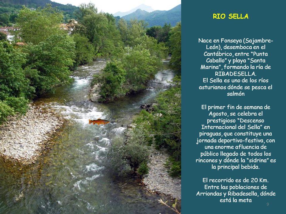 El Sella es uno de los ríos asturianos dónde se pesca el salmón