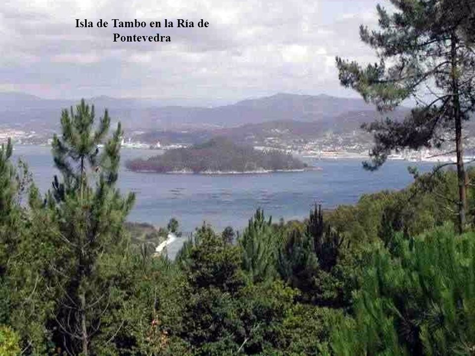 Isla de Tambo en la Ría de Pontevedra