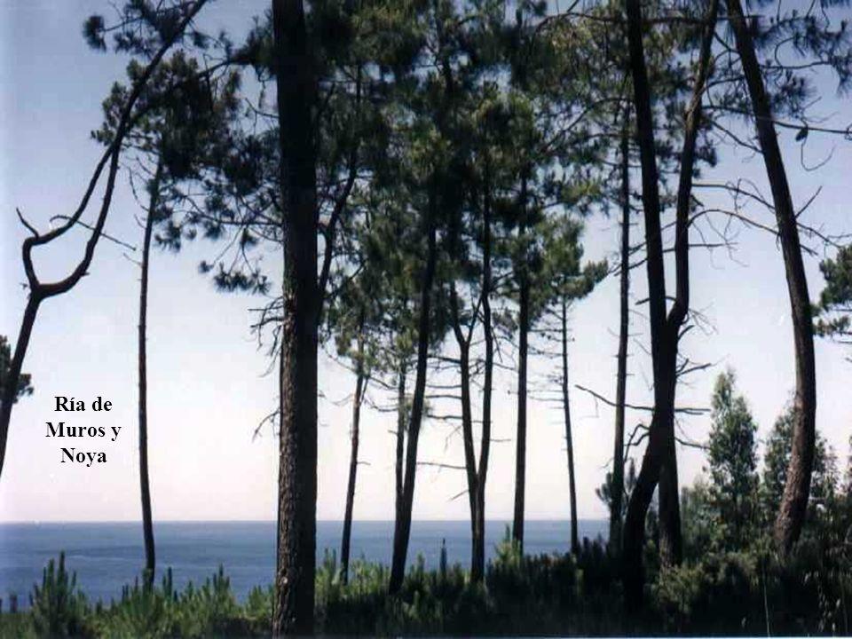 Ría de Muros y Noya