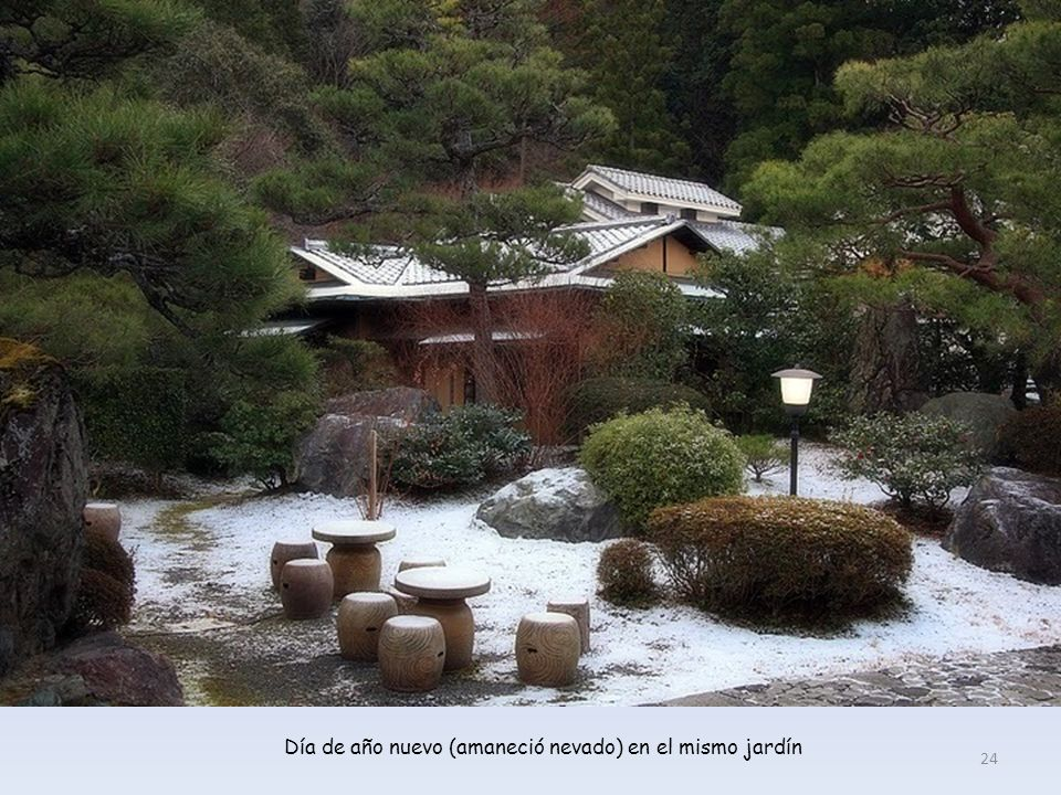 Día de año nuevo (amaneció nevado) en el mismo jardín