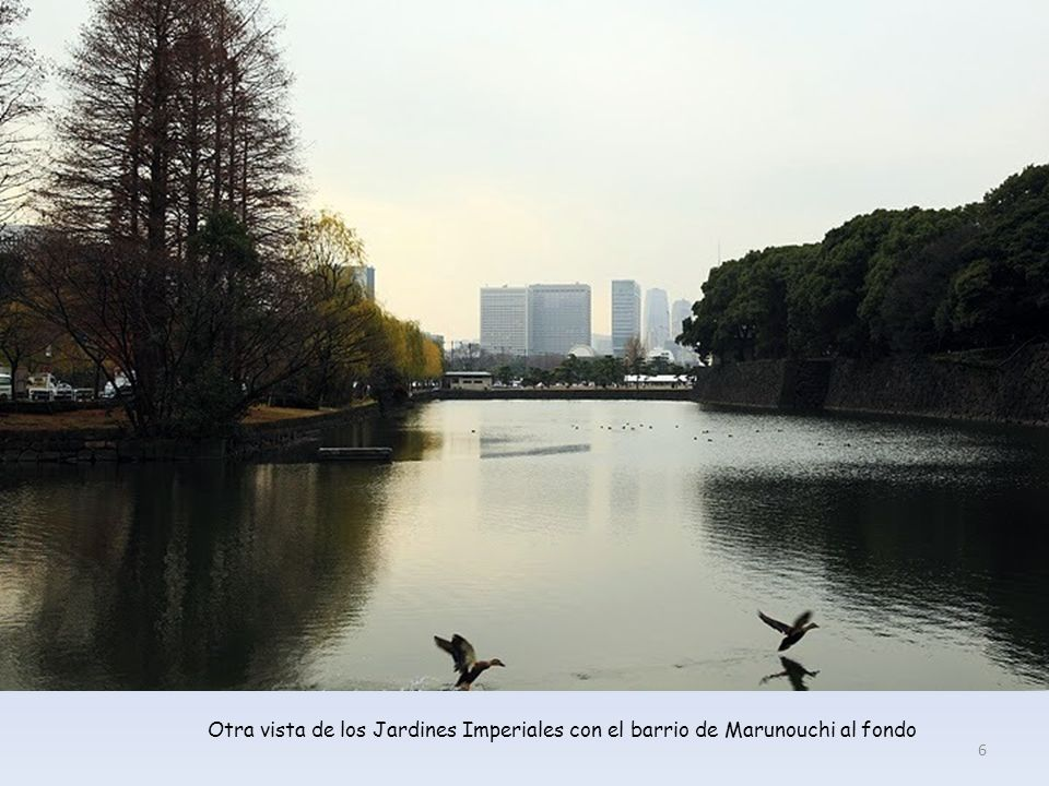 Otra vista de los Jardines Imperiales con el barrio de Marunouchi al fondo