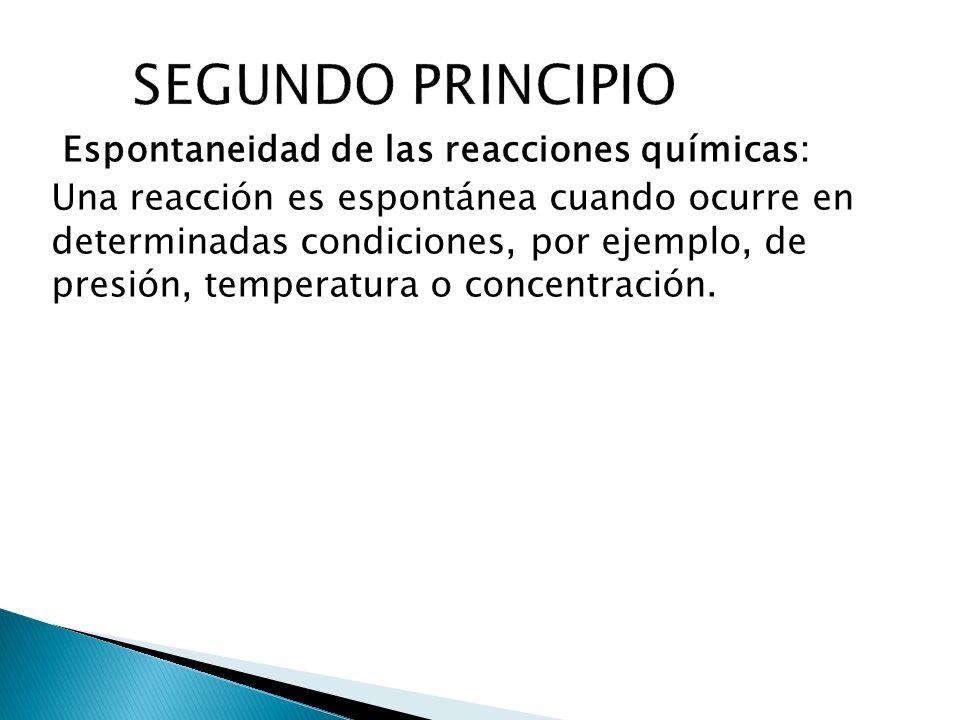 SEGUNDO PRINCIPIO