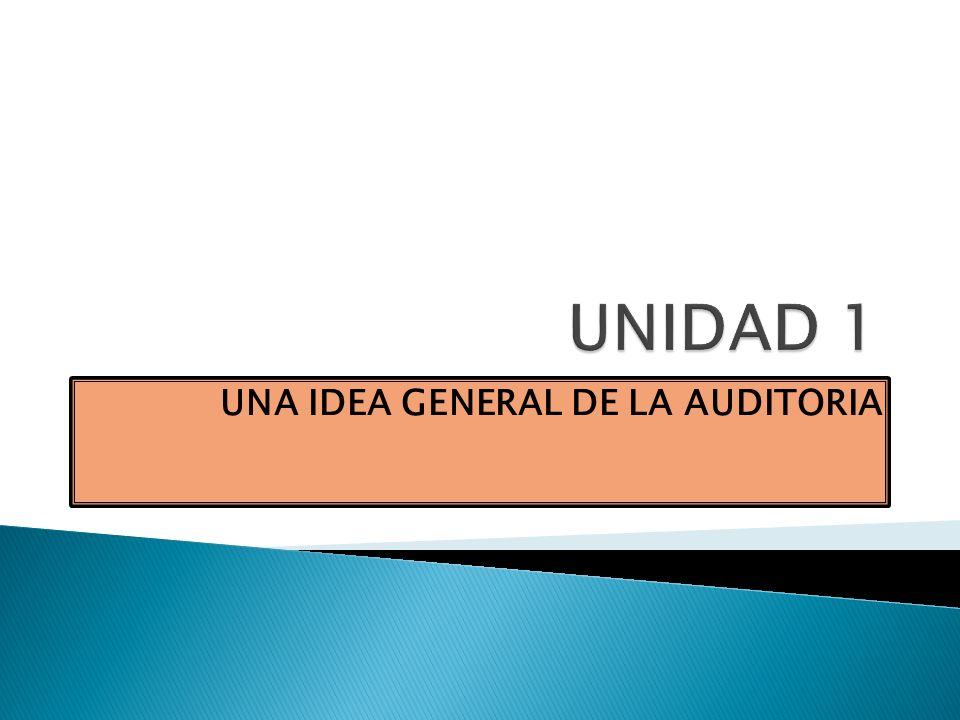 UNA IDEA GENERAL DE LA AUDITORIA