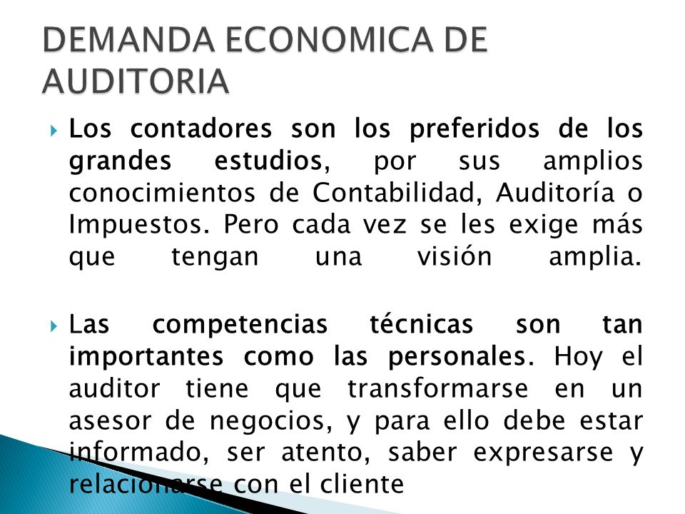 DEMANDA ECONOMICA DE AUDITORIA