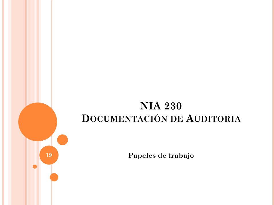 NIA 230 Documentación de Auditoria