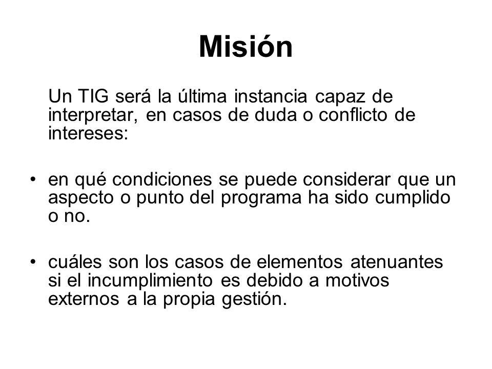Misión Un TIG será la última instancia capaz de interpretar, en casos de duda o conflicto de intereses: