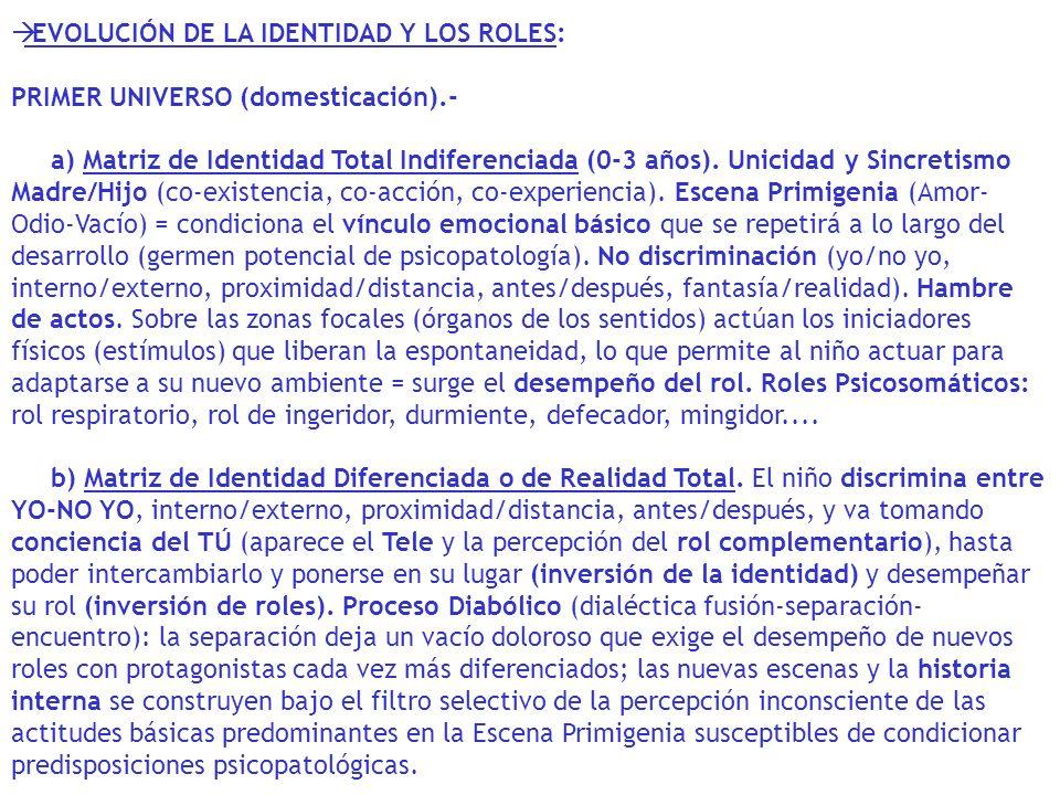 EVOLUCIÓN DE LA IDENTIDAD Y LOS ROLES:
