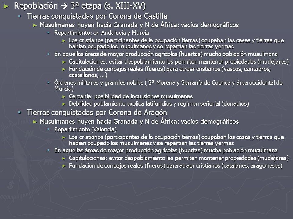 Repoblación  3ª etapa (s. XIII-XV)