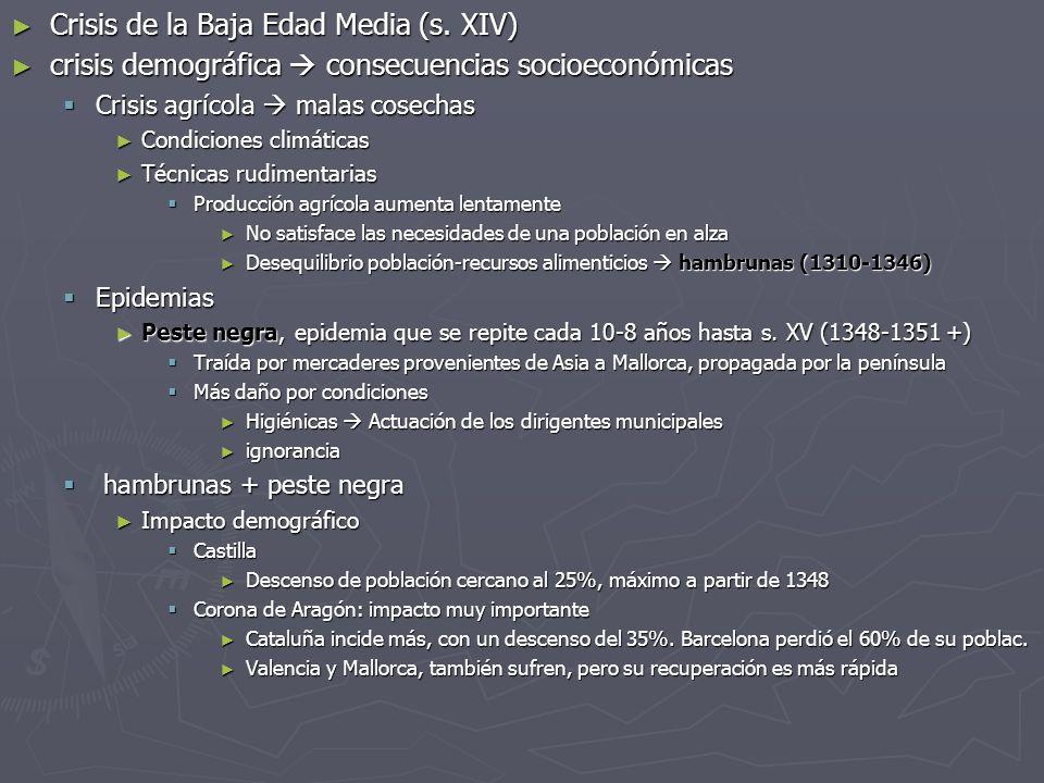 Crisis de la Baja Edad Media (s. XIV)