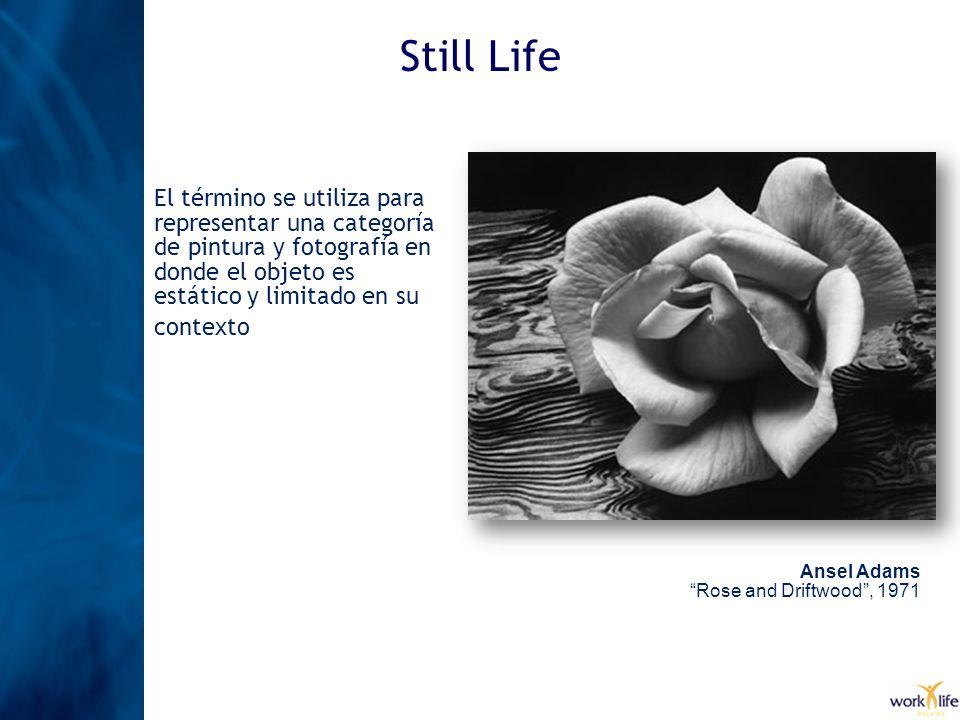 Still Life El término se utiliza para representar una categoría de pintura y fotografía en donde el objeto es estático y limitado en su contexto.