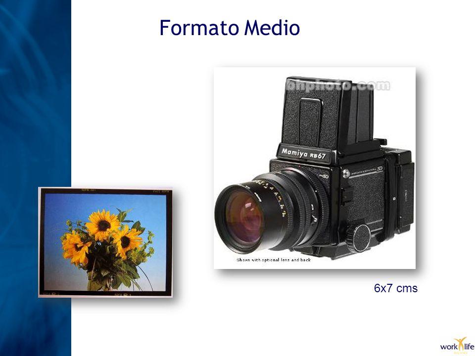 Formato Medio 6x7 cms