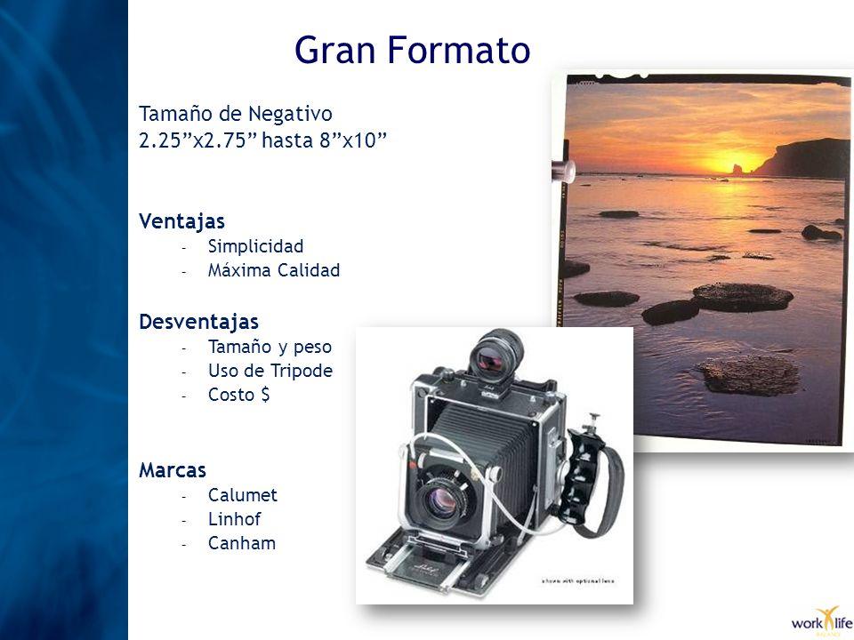 Gran Formato Tamaño de Negativo 2.25 x2.75 hasta 8 x10 Ventajas