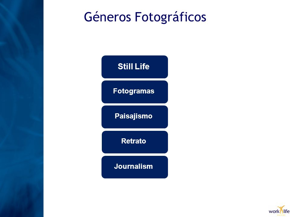 Géneros Fotográficos Still Life Fotogramas Paisajismo Retrato