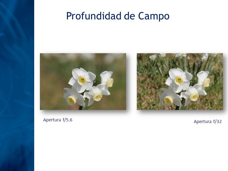 Profundidad de Campo Apertura f/5.6 Apertura f/32