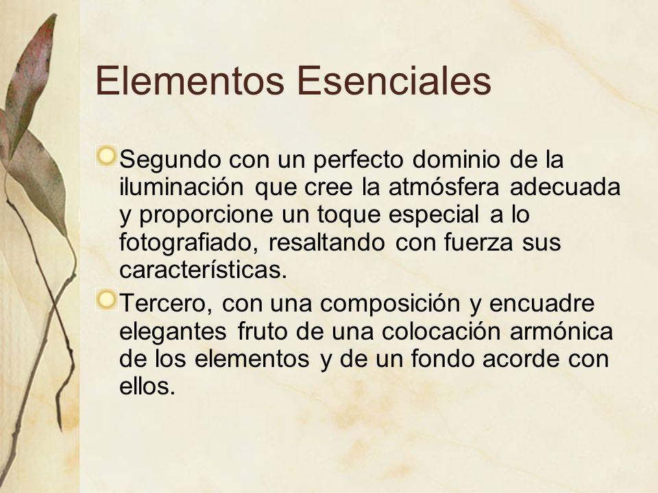 Elementos Esenciales