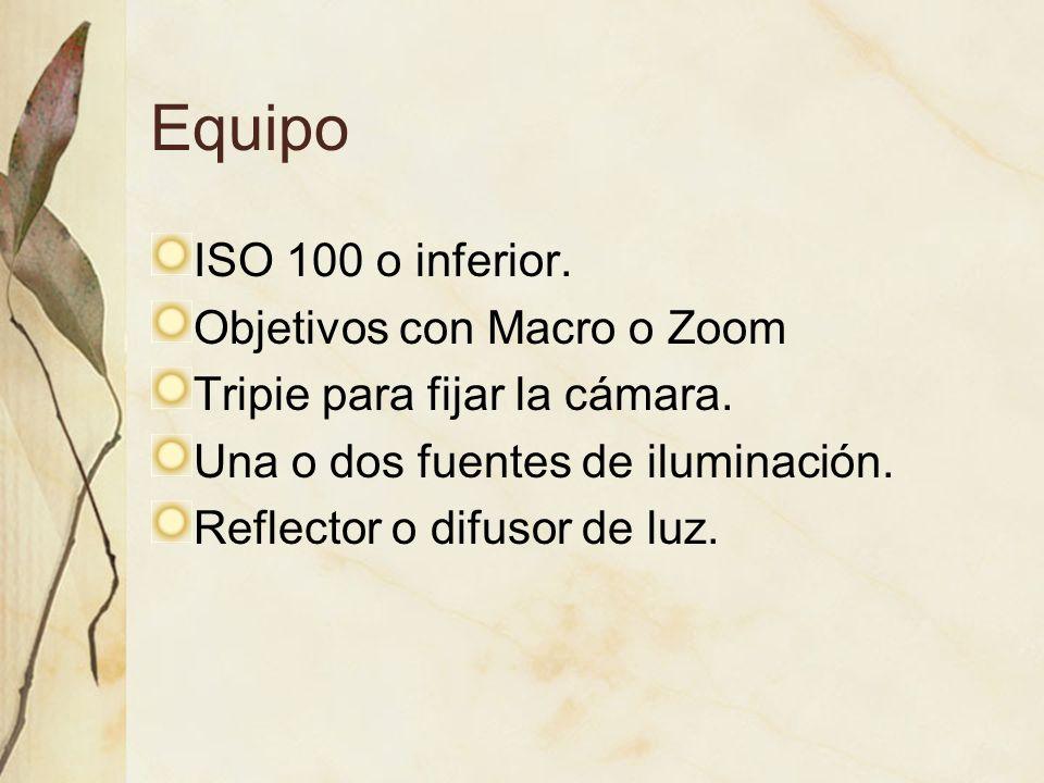 Equipo ISO 100 o inferior. Objetivos con Macro o Zoom