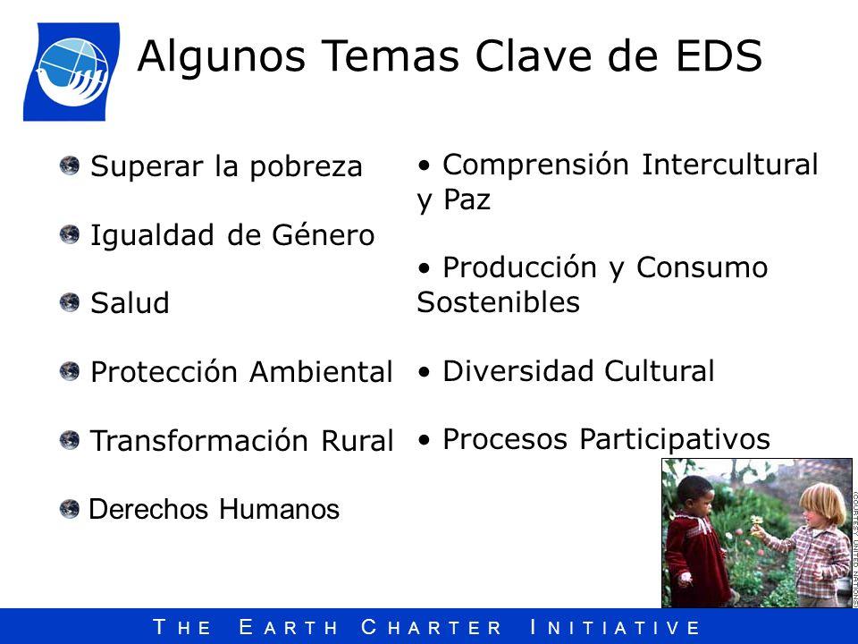 Algunos Temas Clave de EDS